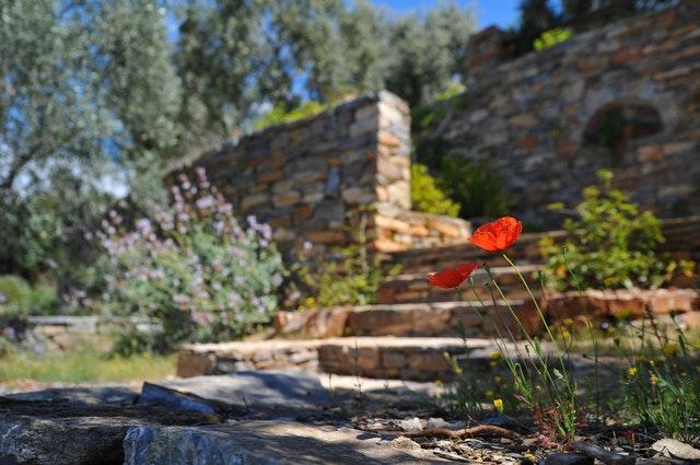 Kamenné schody v záhrade