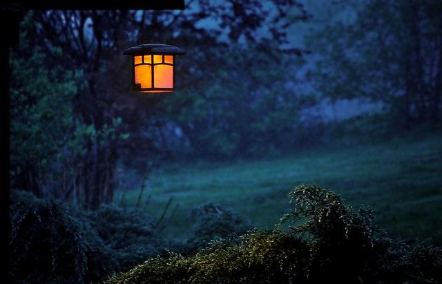 Rozsvietený lampión na strome v záhrade