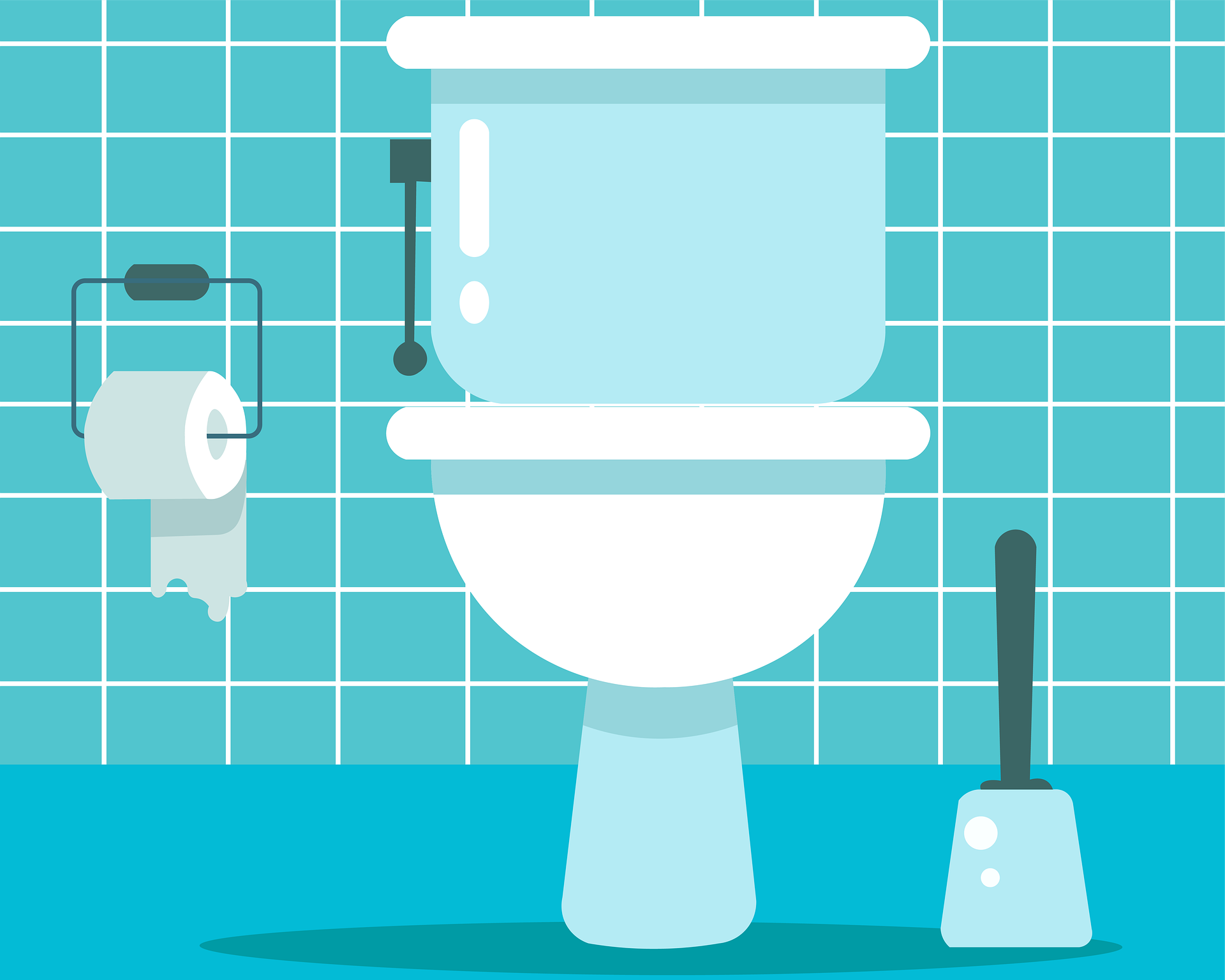 toilet-5581516_1920